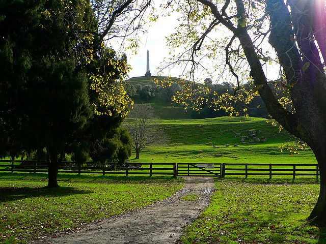 Cornwall Park, Auckland, New Zealand.