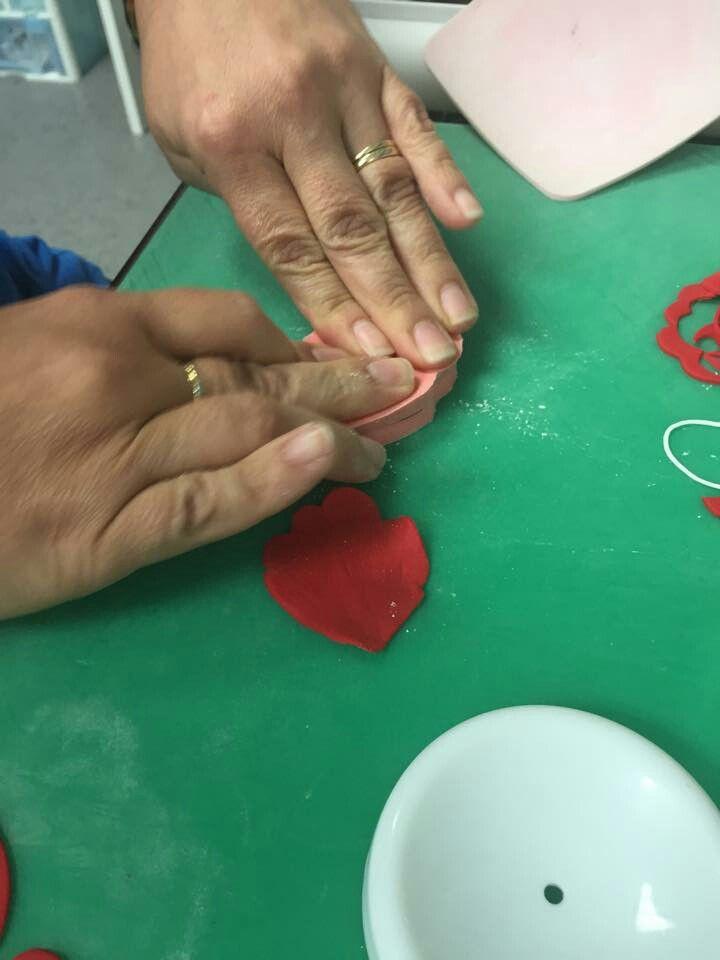 Veining Poppy Petals