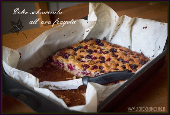 Un #ricetta semplice e #veloce per un un dolce con l' #uva #fragola. Frutto dall'aroma strepitoso!  Call it #concord #grape or #fox grape you can never forget that special taste after you tried it So here is an easy and #quick recipe to bake a cake that smells and tastes gorgeous!