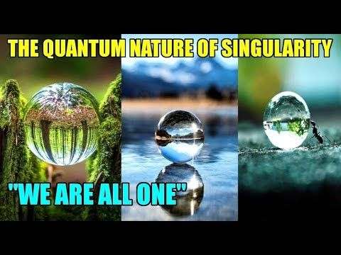 Wisdom Meditation - Human Emotion - We Are All One - The Quantum Nature ...