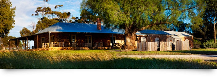 Love the dappled light on our Cellar Door on the Western Ridge of the Barossa Valley, South Australia