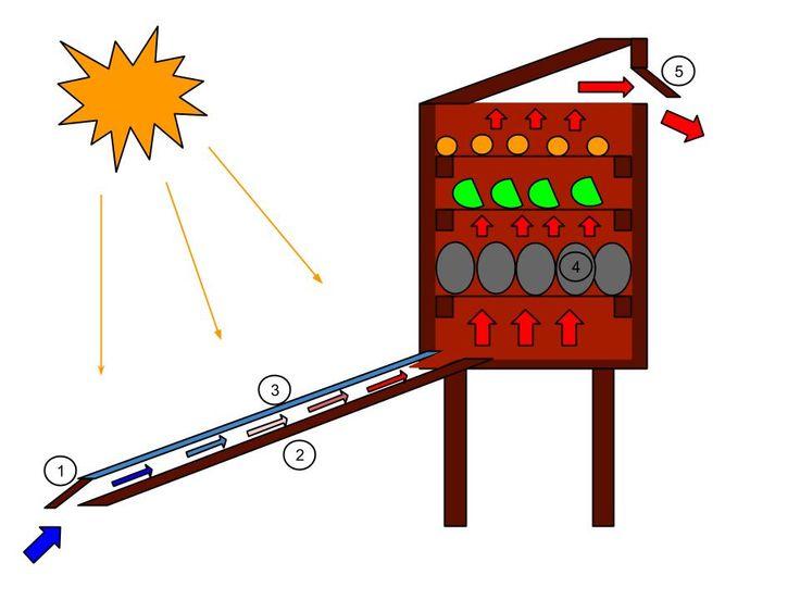 Cómo hacer un secador solar para frutas y verduras. Fácil y sustentable.