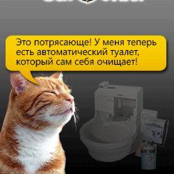 ... автоматический кошачий туалет CatGenie 120 #whycatmeow Find out at - Catsincare.com!