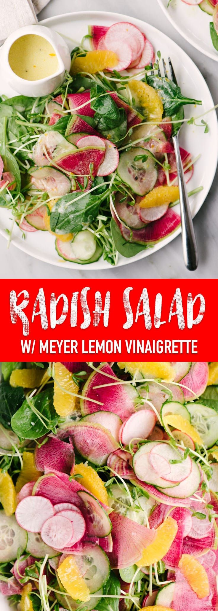 This watermelon radish salad with meyer lemon vinaigrette is the very best of winter produce. This winter salad recipe is vibrant, earthy, tangy and almost too pretty to eat. #vegetarian #winter #radish #watermelonradish #wintersalad  #recipe