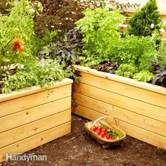 save water and grow healthier veggies and flowers with a self-watering planter. this attractive cedar design uses perforated drain pipe to store and distribute the water.