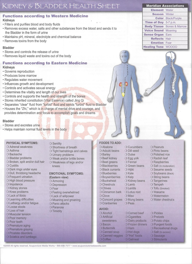 Health sheet for Kidney/Bladder http://infinityflexibility.com/wp/
