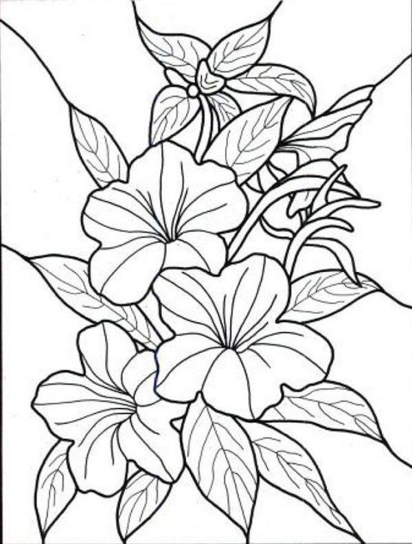 Flores Para Colorear Muy Bonitas Paginas Para Colorear De Flores