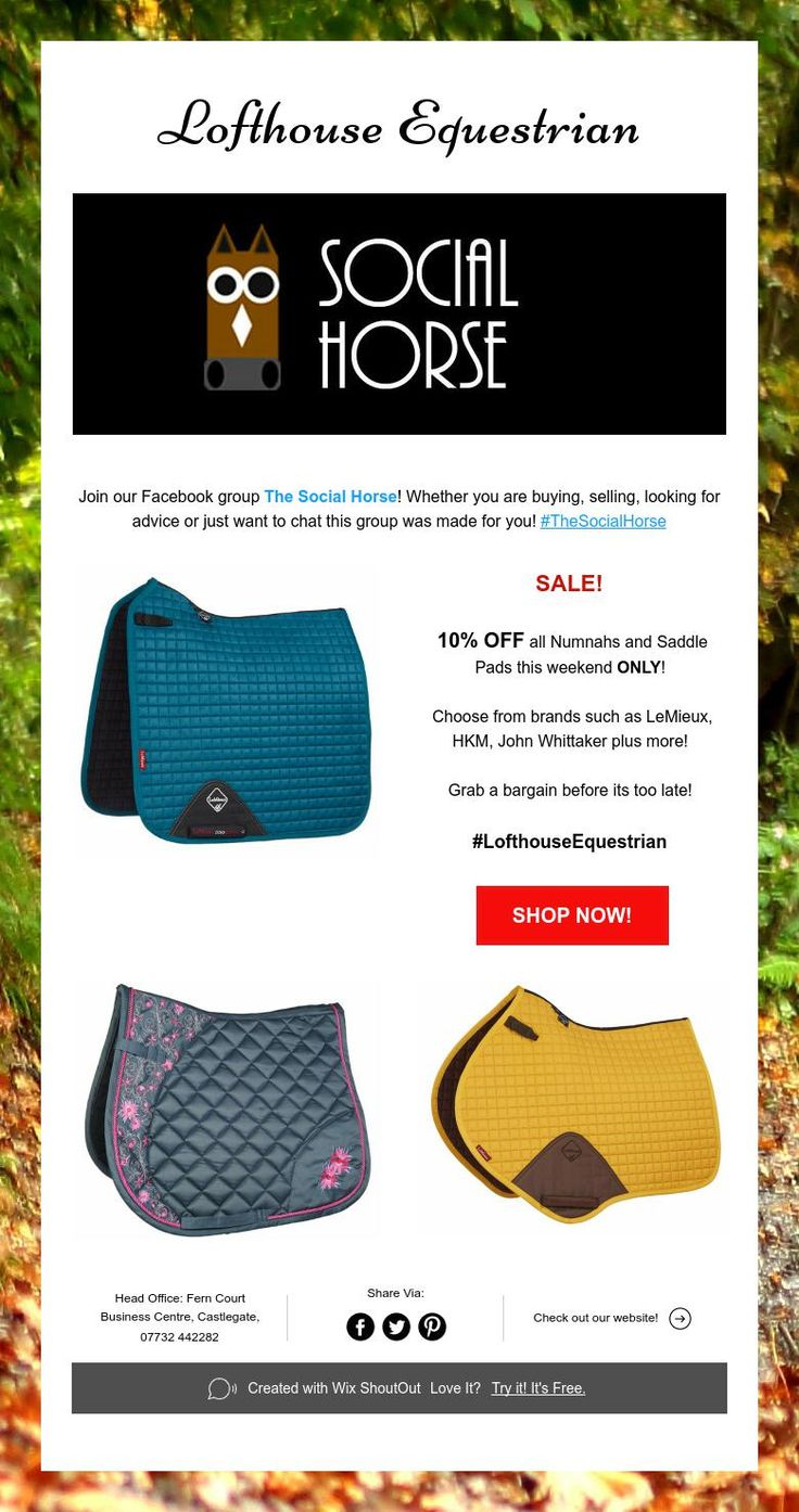 Lofthouse Equestrian... The Social Horse and weekend SALE!
