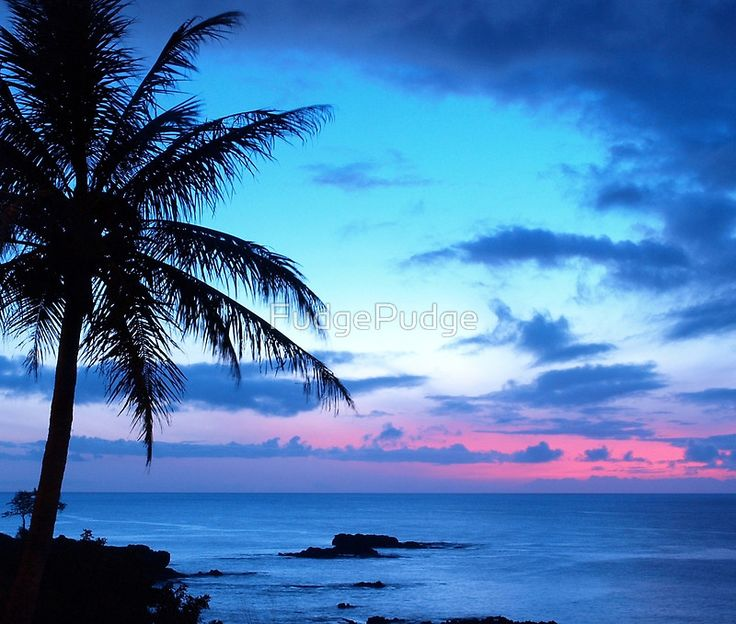 Tropical Island Pretty Pink Blue Sunset Landscape