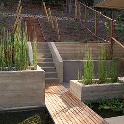 Retaining Walls: May be a bit too ultramodern, but I like the tall grass/bamboo in the planters