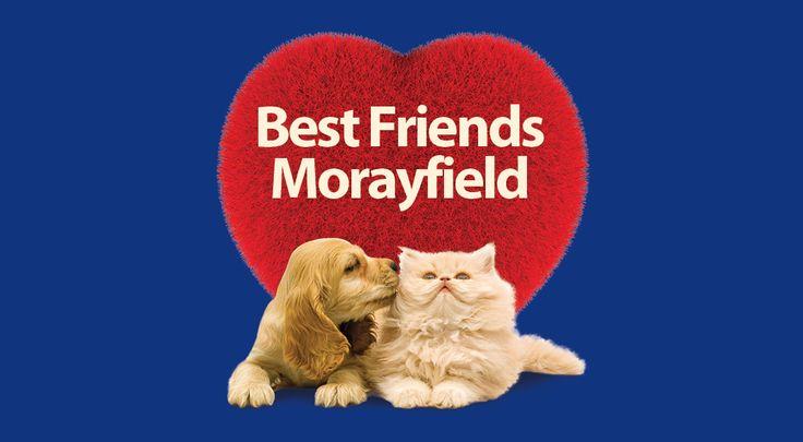 Best Friends Morayfield   Pet Food, Pet Accessories, Dog Grooming, Our Vet, Puppy Pre-School and Cat Adoption   Best Friends Pet SuperCentre