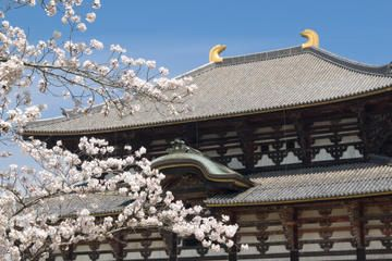 Kyoto and Nara Day Tour Including Golden Pavilion and Todai-ji Temple from Osaka - Osaka | Viator