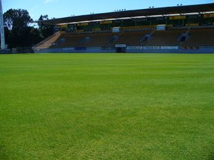 Yarrow stadium was selected as a venue for the 2011 Rugby World Cup. The field required redevelopment in order to meet the prescribed World Cup Standards. NZSTI provided a feasibility study, specification and construction observation for the redevelopment.