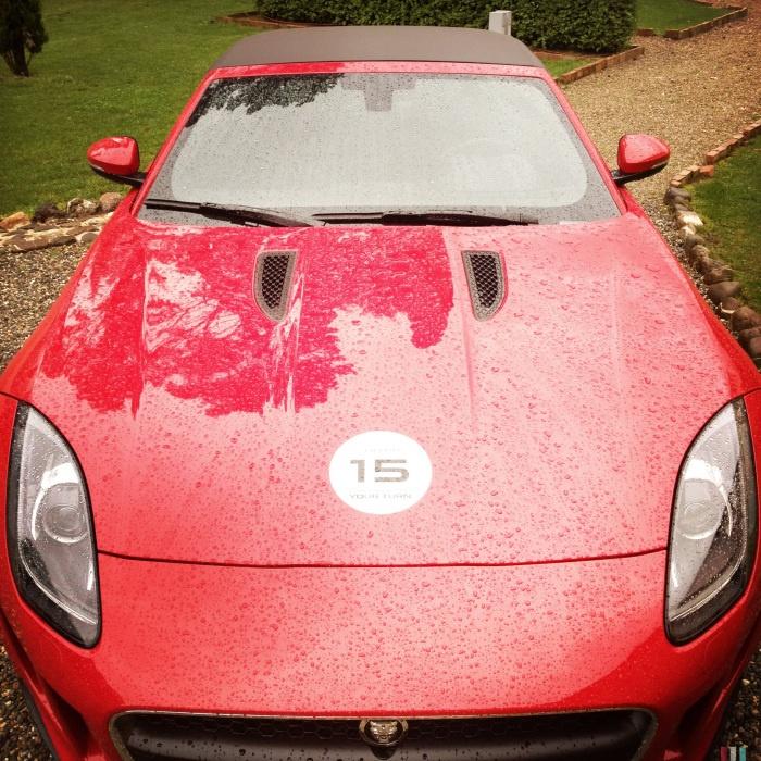 Jaguar bagnata, Jaguar fortunata, anche perchè ha piovuto per tutti e tre i giorni