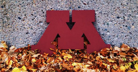 41 Signs You Went To The University Of Minnesota | Thought Catalog