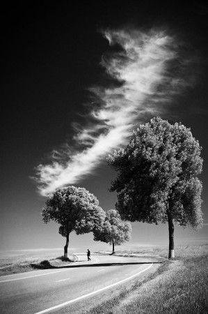 Long White Cloud by Padurariu Alexandru