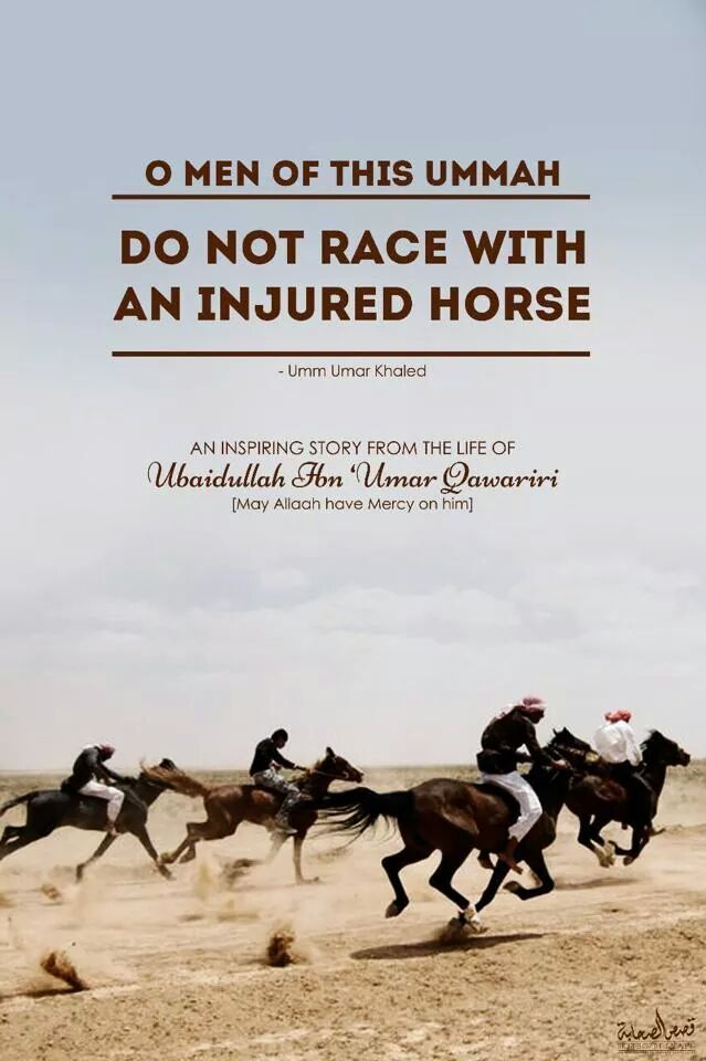 Don't race with an injured horse.