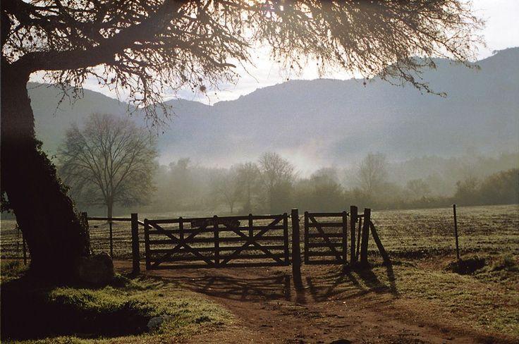 Countryside - Nr. Cordoba, Argentina