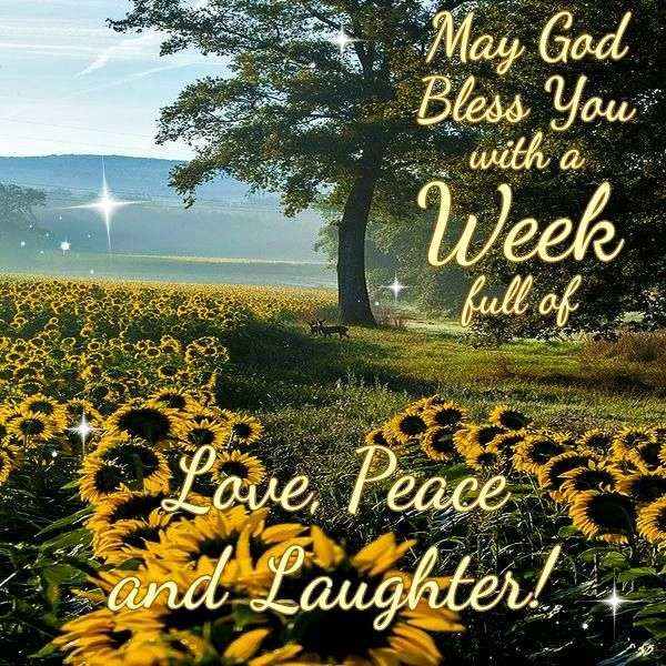 Image result for god bless your week images