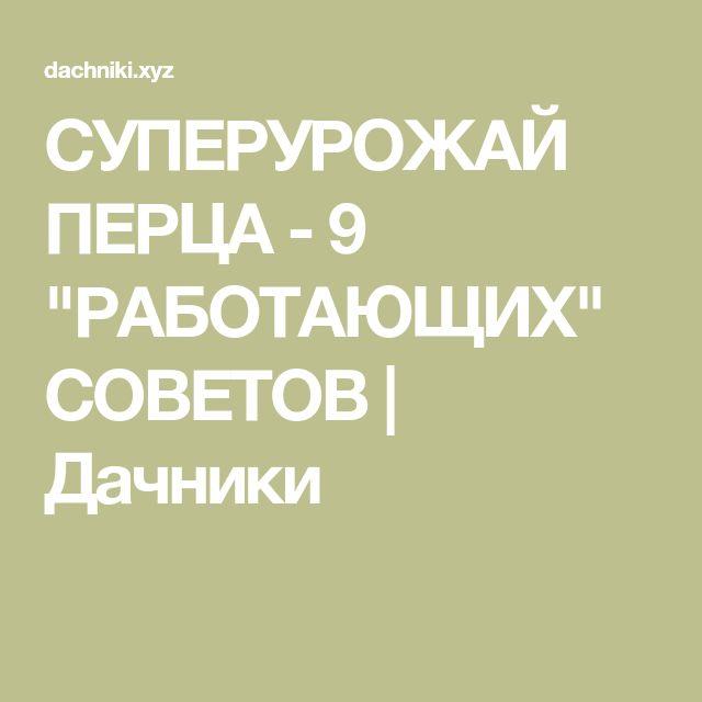 """СУПЕРУРОЖАЙ ПЕРЦА - 9 """"РАБОТАЮЩИХ"""" СОВЕТОВ   Дачники"""