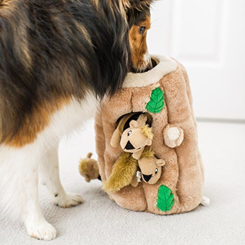 The 10 Best Puzzle Toys That Actually Help Bored Dogs
