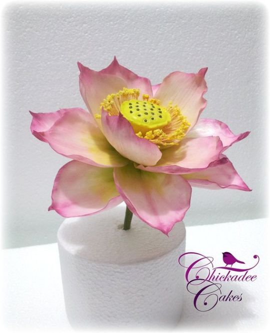 how to make gumpaste oriental lilies
