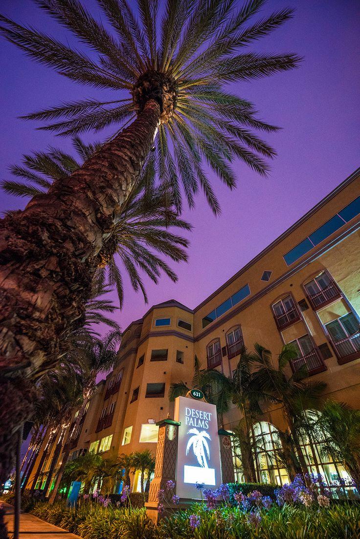Desert Palms Hotel Suites Review