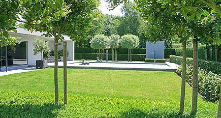 http://www.tuindesign-ten-horn.nl Tuinarchitect - tuinontwerp. Moderne minimalistische strakke achtertuin. Onderhoudsvriendelijke tuin met vijver en zwembad in Belgisch Limburg.
