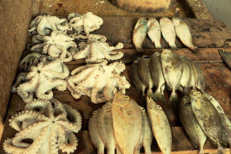 While volunteering Stone Town fresh Seafood Market is experience. http://bit.ly/Zanzibarvolunteer?utm_content=buffer63001&utm_medium=social&utm_source=pinterest.com&utm_campaign=buffer
