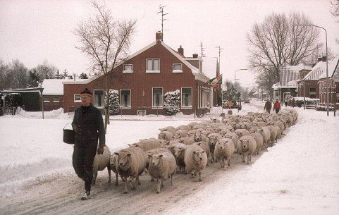 Oude beroepen | Remeijer.nl