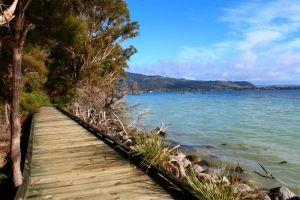 #Rotorua Lakefront Walkway
