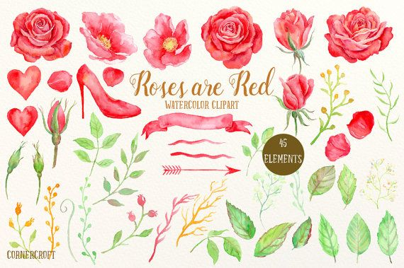 Watercolor Clipart Roses Are Red Red Rose Wild Rose High Heel