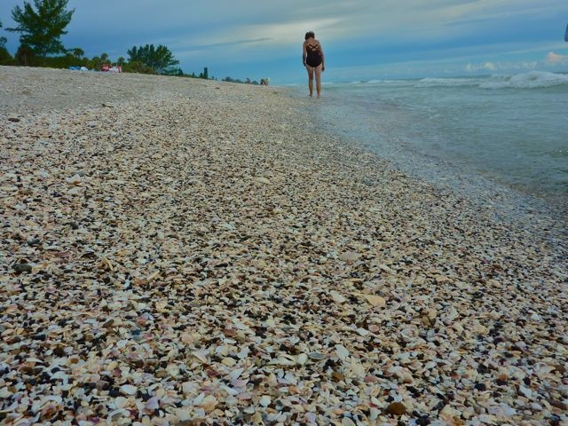 Blind Pass Beach Englewood Florida-My favorite Place to be ...