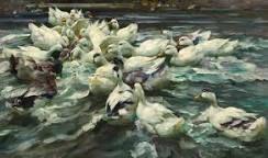 Image result for alexander max koester molting ducks