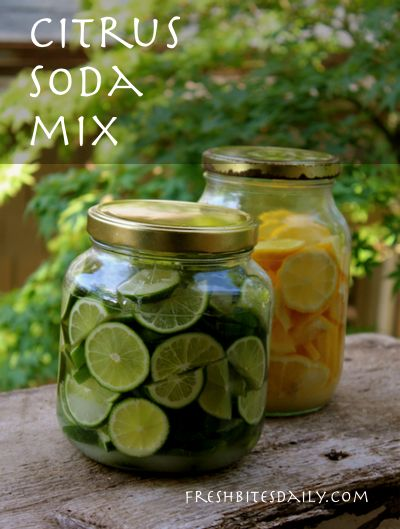 A refreshing and simple citrus soda mix, ready for your seltzer