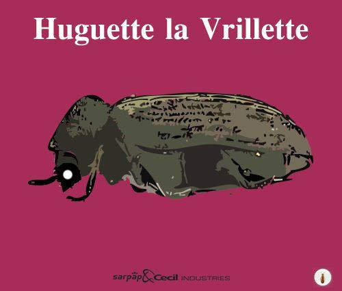 http://www.traitons-du-bois.com/vrillette-insecte-larve-xylophage/