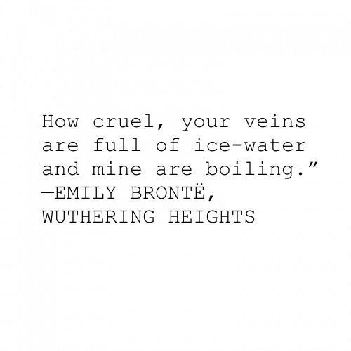 What are the main conflicts in Wuthering Heights and how do they relate to the novel's themes?