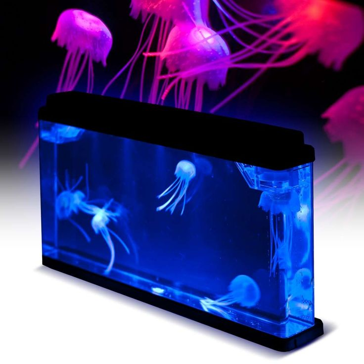 1000 ideas about fake fish tank on pinterest submarine for Jelly fish aquarium