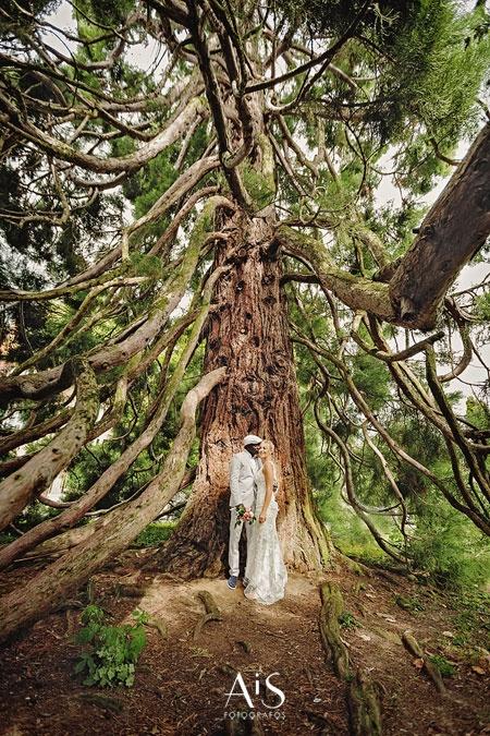 Wedding Lake Leman