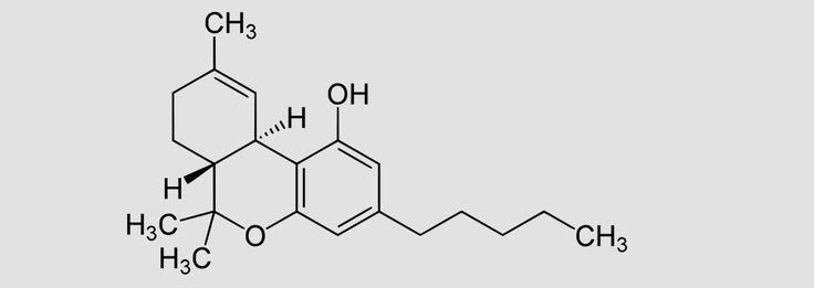 The Medical Benefits of Cannabis Compounds – Black Rock Originals