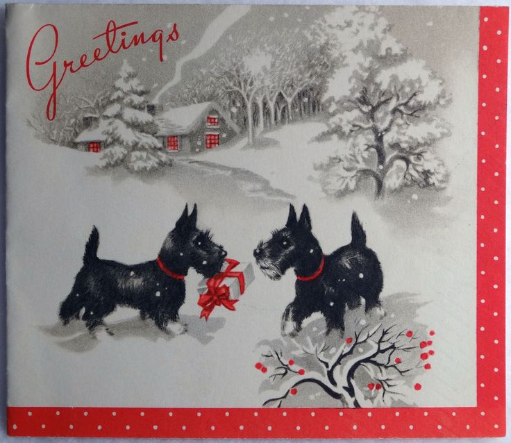 15 50s Scottie Dogs Exchange Gifts Vintage Christmas Greeting Card | eBay