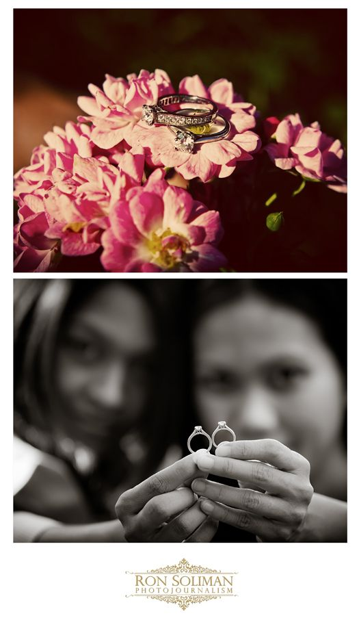 Engagement Rings on flowers - Lesbian Marriage - Diamond Rings - By Ron Soliman Photojournalism