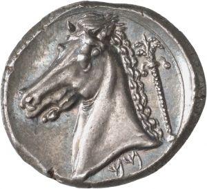 Tetradracma - argento - Cartagine? (310-300 a.C.) - testa di cavallo vs.sn. sul retro una palma, in basso MM in caratteri punici - Münzkabinett  Berlin