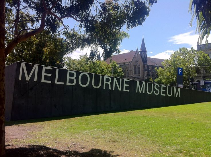 Melbourne Museum provides a grand sweep of Victoria's natural and cultural histories, with exhibitions covering everything from dinosaur fossils and giant squid specimens to the taxidermy hall, a 3D volcano and an open-air forest atrium of Victorian flora.