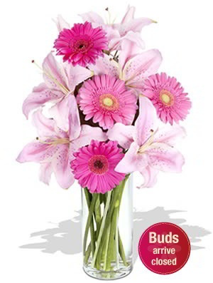 Beautiful    A beautiful bouquet of aromatic Oriental Lilies and chirpy Gerberas makes this the perfect choice. $91.47
