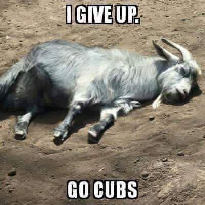 Chicago Cubs's goat