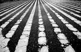 photography lines\ - Google Search