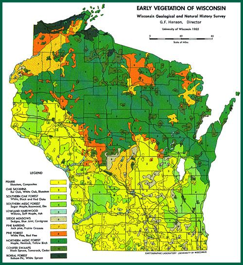 Early Vegetation Of Wisconsin | VEGETATION MAPS Serve As References For  Native Plantings.