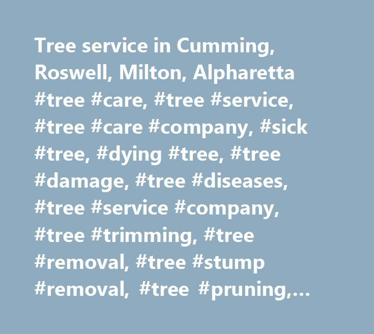 Tree service in Cumming, Roswell, Milton, Alpharetta #tree #care, #tree #service, #tree #care #company, #sick #tree, #dying #tree, #tree #damage, #tree #diseases, #tree #service #company, #tree #trimming, #tree #removal, #tree #stump #removal, #tree #pruning, #tree #maintenance, #arborist, #certified #arborist, #tree #thinning…