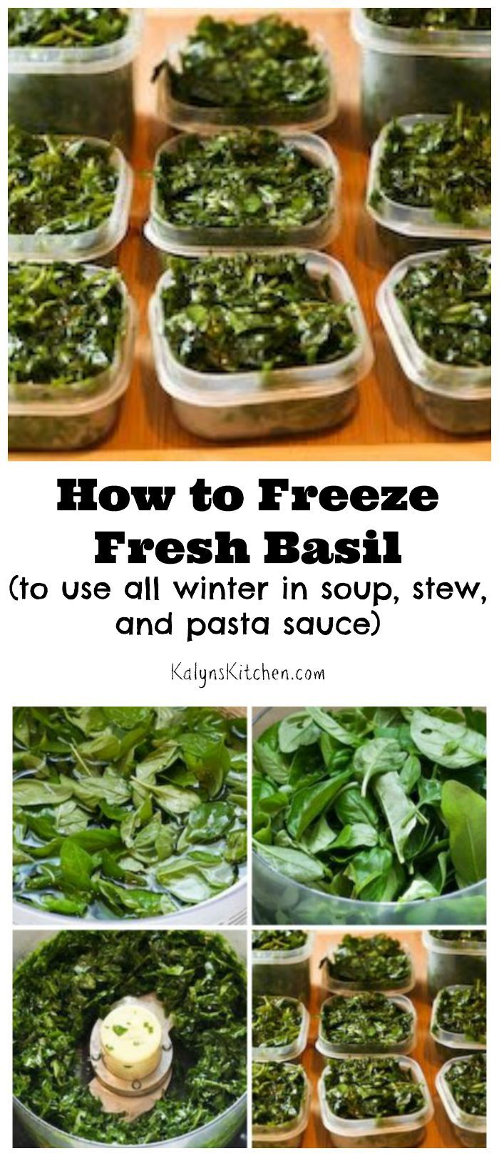 Here are instructions for How to Freeze Fresh Basil, a method I've used for more than 20 years. The frozen basil is great all winter in soup, stew, and pasta sauce, and this post has links to some recipes ideas to use your frozen basil. [found on KalynsKitchen.com]